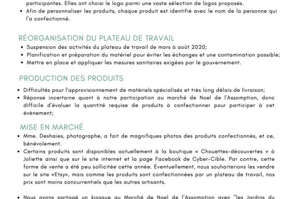 Rapport-Annuel-Cyber-Cible-19